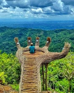 Pinus Pengger Yogyakarta Indonezja