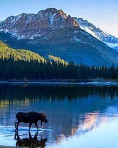 Park Narodowy Glacier Kanada USA