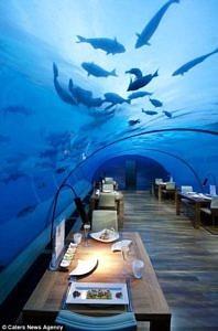 Restauracja Malediwy
